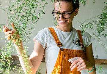 Protege tus plantas de insectos y plagas